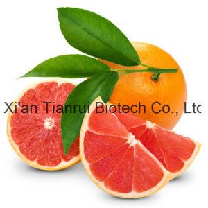 Grapefruit Extract/Grapefruit Powder/Grapefruit Enzyme pictures & photos