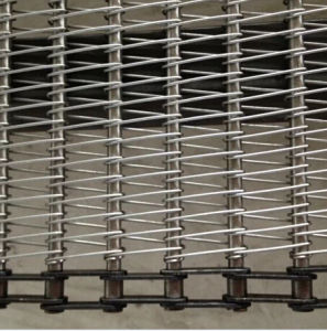 Stainless Steel Wire Conveyor Belt pictures & photos
