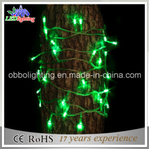 Christmas Decoration Holiday Light Green LED String Light 70 LED 5mm String Lights pictures & photos