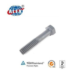 Hexagon Bolt with Nut Zinc Plated for Railroad pictures & photos