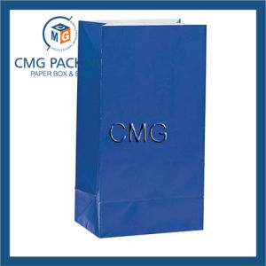Unique Blue Paper Party Favor Bags pictures & photos