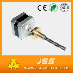 Tr8*8 Acme Threaded Rod NEMA 17 Stepper Motor pictures & photos