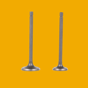 Cheap Motorcycle Spare Parts Inlet Intake Exhaust Engine Valve for Motorbike pictures & photos