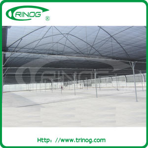 Modern plastic film greenhouse for agriculture pictures & photos