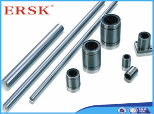 Metric System Hollow Spindle Linear Shaft Rod pictures & photos