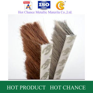 Weather Strip, Silicon Weather Strip, Weather Strip with Felt pictures & photos