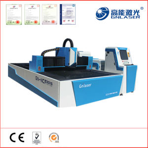 New Ipg 700W Fiber Laser for 8mm Thick Metal