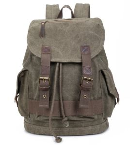 High Quality Boy Canvas Backpack (RS-PTB666A) pictures & photos