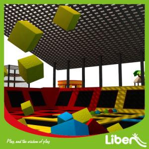 Playground for Children 2016 Hot Sale Theme Indoor Trampoline pictures & photos