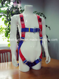 Seat Belt with Three-Point Fixed Mode (EW0313H) pictures & photos