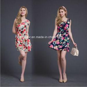Dresses Chiffon Lace Ladies Dress, Printing Dress pictures & photos