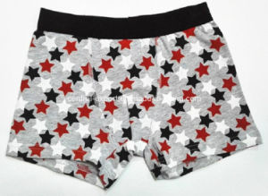 Allover Star Printed New Style Boy Boxer Brief Underwear pictures & photos