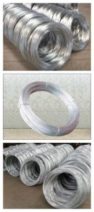 Hot Dipped Galvanized Steel Wire in Construction