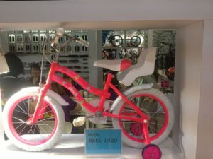 Factory Supply Kids Bike Hc-Cw-25 pictures & photos