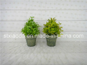 Artificial Plastic Potted Flower (XD15-366A)