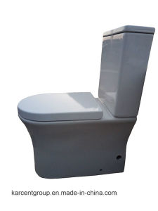 Two Piece Ceramic Toilet Ce Washdown Water Closet Wc 13315 Rimless pictures & photos