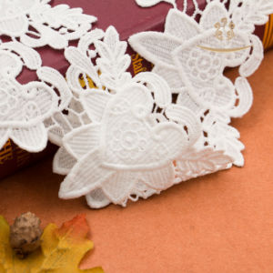 High Quality 100% Milk Elastic Trim Lace for Underwear Pants White Stretch Lace for Garment Decoration pictures & photos