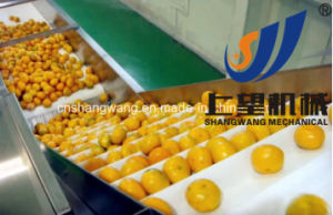 Turnkey Orange Juice Production Line, Making Machinery for Sale pictures & photos