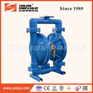 Qby Powerful Suction Stainless Steel Rotary Lobe Pump pictures & photos