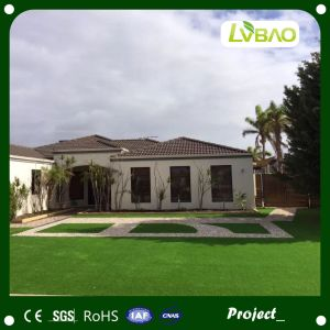 PE Artificial Turf and Landscaping Lawn Synthetic Grass pictures & photos