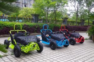 4 Years Gold Supplier New Style Safety 80cc Go Karts Sale pictures & photos