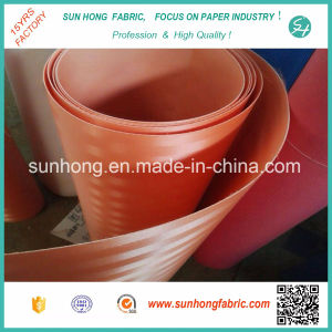 Polyster Screen Mesh Filter Cloth/Desulfurization Belt pictures & photos