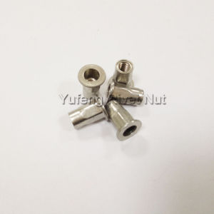 Flat Head Half Hexagon Rivet Nut pictures & photos