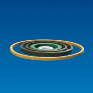 PTFE O Ring 100% Pure Virgin Teflon pictures & photos