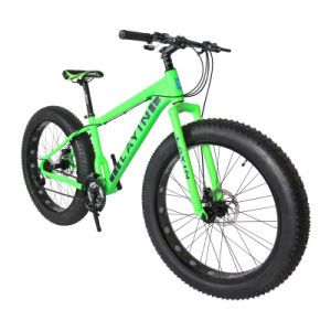 High Quality Aluminum Alloy Beach Bicycle with Fat Tires pictures & photos