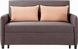 Fabric Pull out Sofa Cum Bed pictures & photos