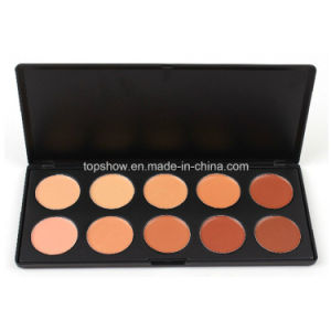 Private Label No Logo 10 Color High Quality Cosmetic Concealer Palette Z10