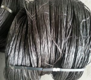 Black Annealed Twisted Wire for Israel pictures & photos