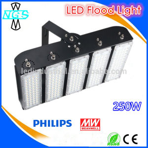 LED Flood Light 250W High Lumens LED Spot Lighting IP67 pictures & photos