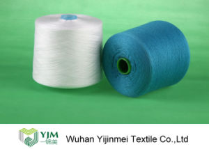 Spun Polyester Yarn with Paper (plastic) Cone Made in China pictures & photos
