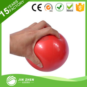 No1-3 Medicine Exercise Fitness Yoga Ball Filled with Sand