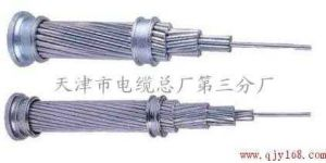 Bare Aluminum Conductor AAC/AAAC/ACSR pictures & photos