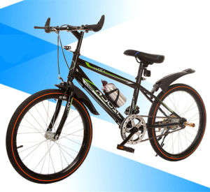 Cheap Adult Carbon MTB (LY-A-110) pictures & photos