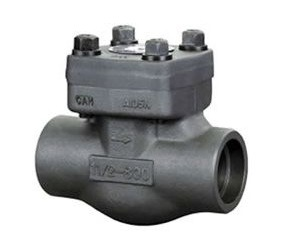 . A105 Forged Steel Check Valve pictures & photos