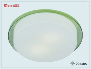 Modern Round Surface Mount LED Lamp Ceiling Lighting pictures & photos