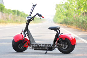 Hot Selling Big Tire Scooter Electrical Citycoco with Front Hydraulic Shock Absorber Es8004III pictures & photos