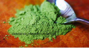 Matcha 100% Natural pictures & photos
