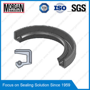 Customize All Series NBR/FKM/Fabric Rubber Oil Seal pictures & photos