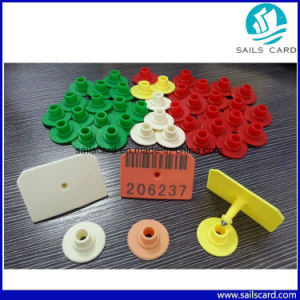 Visual Cattle Tags Ear Tags for Livestock Management pictures & photos