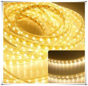 5630 High Lumen Flex LED Strip Color Stripe 2835 120V pictures & photos