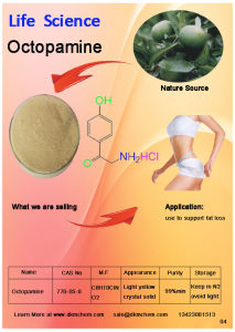 Di-Octopamine CAS No 770-05-8 for Lose Weight