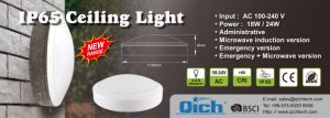 20W IP65 Waterproof LED Ceiling Lights with Ce Approval pictures & photos