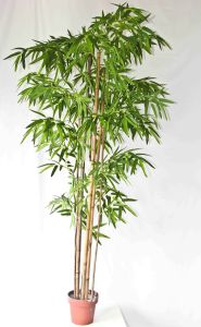Artificial Bamboo Tree Bamboo Plant pictures & photos
