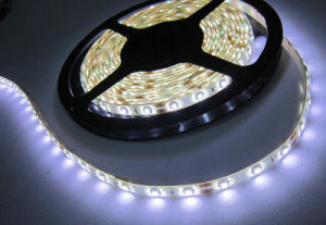 White Color Christmas LED Flexible Strip Light (5M/ROLL) pictures & photos