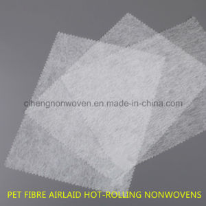 Pet Fibre Backbone Nonwoven Material pictures & photos