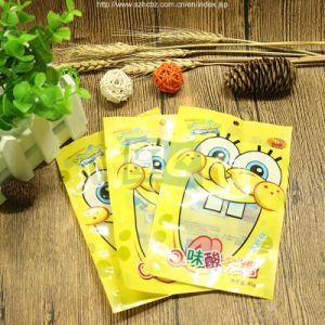 Zipper Printed Plastic Vacuum Bag pictures & photos